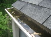 Collect water from your roofs by installing rain gutters