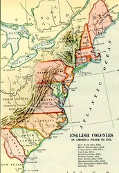 Similarities of the colonies