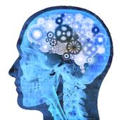 7 tipos de testes de quociente de inteligência.