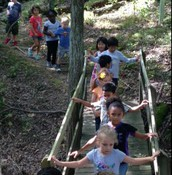 We love our Nature Trail at Symmes!