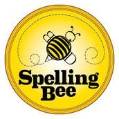 Spelling Bee Finalists!