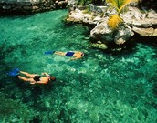 The best time to the enjoy Maya Riviera Reef is now!