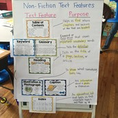 Nonfiction Text Features poster