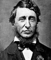 Henry D. Thoreau