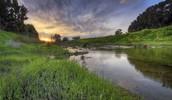 River pedieos