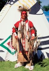 Shoshone tribe