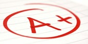 Grading and Attendance Policy