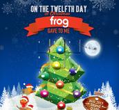 Frog Advent Calendar