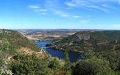 Jagus River