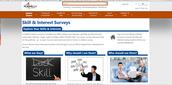 Skills and Interest Surveys