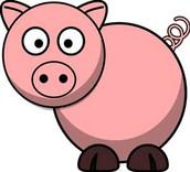 Kiss A Pig Contest