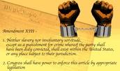 What was the 13th amendment?