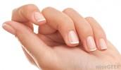 Skin and Nail organ