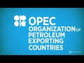 What is OPEC