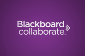 Blackboard- Collaborate