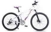 26″ MTB Bike