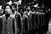 the Black Panthers (not the super hero)