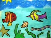 Second Grade Ocean Life