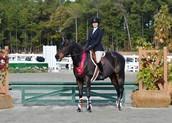 2014 Horse Show Finals