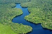 What are the major land forms in Brazil? What are the major rivers of Brazil.