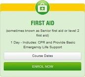 Senior First Aid