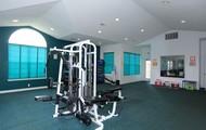 Huge Fitness Center
