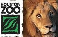 Houston zoo trip
