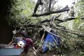 Datos del tifón
