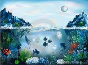 Animals swimming under water