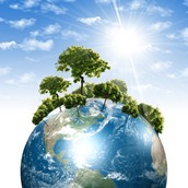 What is Environmental Sustainability?