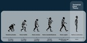Why I believe the human species WILL evolve in the next millennial