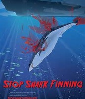 sharks are not meant to be finned