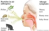 If you have allergies, what can you do to keep from having a reaction?