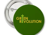 Green Revolution Proven to Work