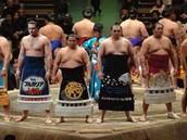 Sumo Wrestling Tournament