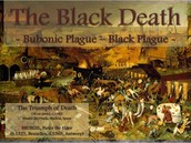 The Black Death : Bubonic Plague