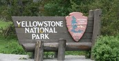 Activities of Yellowstone