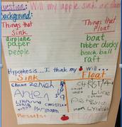 Kindergarten students perform Testable Science Experiments