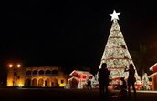 What holiday tradition does your country celebrate in December or at the beginning of the New Year