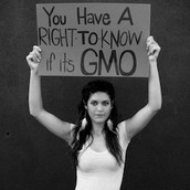 The RIght to Know if it is a GMO