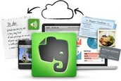 Evernote App or PC