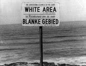 White Only Sign at a Beach Near Capetown