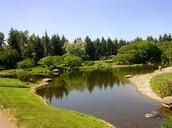 Latent Lakes
