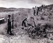 CCC Enrollees building fences to control grazing at camp SCS-Ida-10.