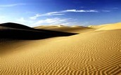 Picture of the sahara