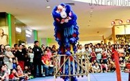 Lion Dance & Wushu