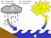 Water cycle? Whats that?