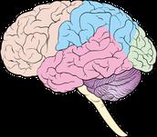 Epilepsy: Dangerous and life ruining