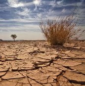 Negative effects on Drought