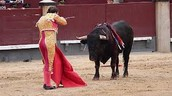 Mexican Bullfighting